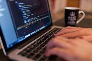 Web Developer at work